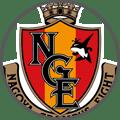 Nagoya Grampus - Team Logo