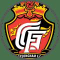 Gyeongnam - Team Logo