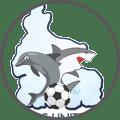 Rivers United - Team Logo