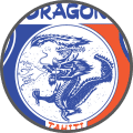 Dragon - Team Logo